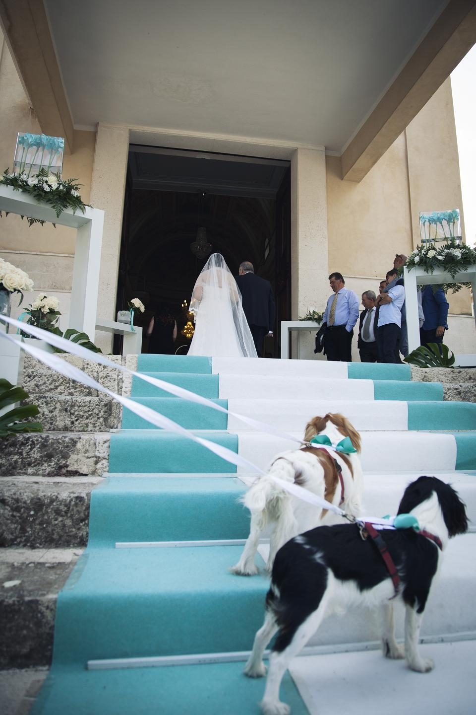 matrimonio 2016 wedding dog sitting laura leonardi