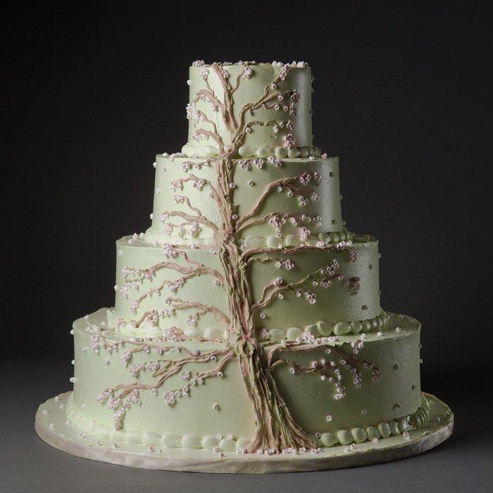 Matrimonio Tema Albero : Matrimonio tema albero della vita panorama sposi