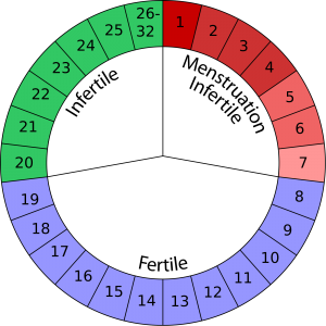ciclo tabella