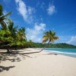 Viaggio di nozze in Madagascar