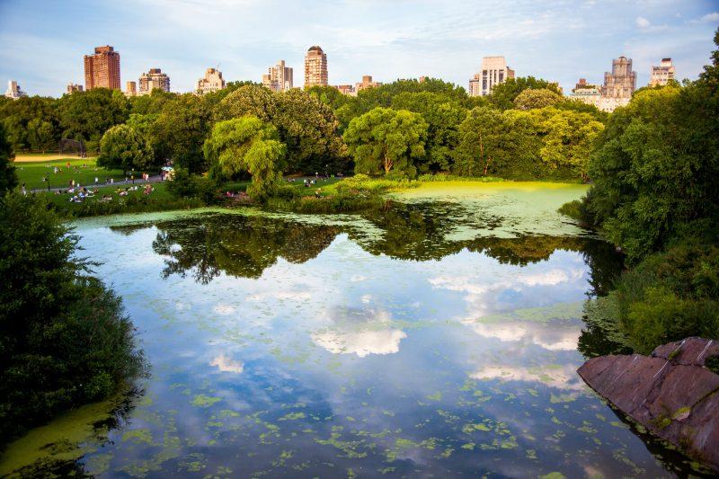 viaggio-di-nozze-newyork