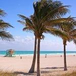 Viaggio di nozze a Miami