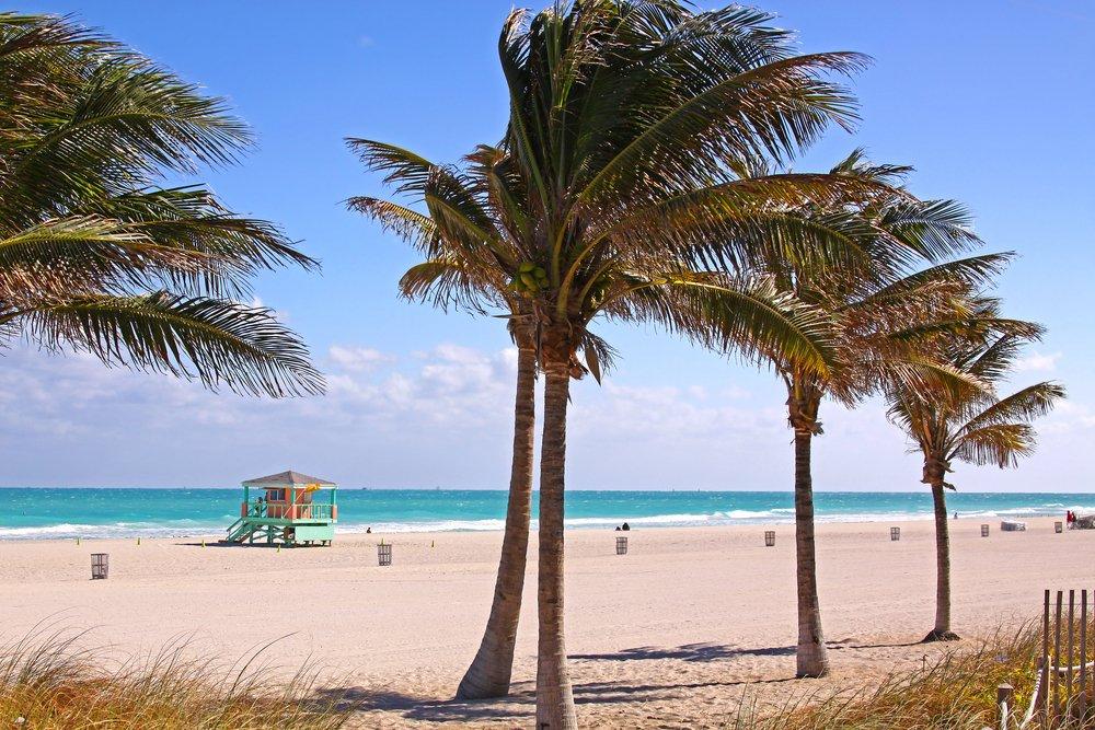Viaggio di nozze a Miami, South Beach