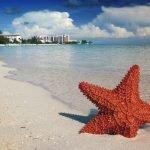 Viaggio di nozze romantico alle Bahamas