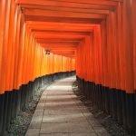 Viaggio di Nozze in Giappone e Bali