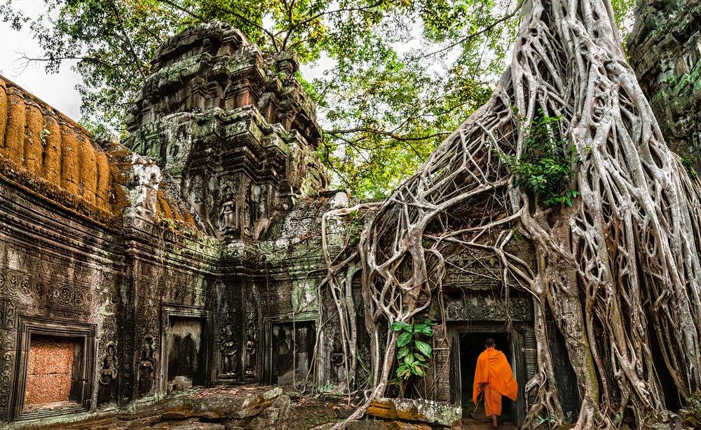 Viaggio di nozze in Cambogia, Angkor Ta Phrom