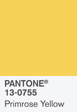 colori per matrimonio, primrose yellow
