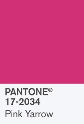 colori per matrimonio, Pink yarrow