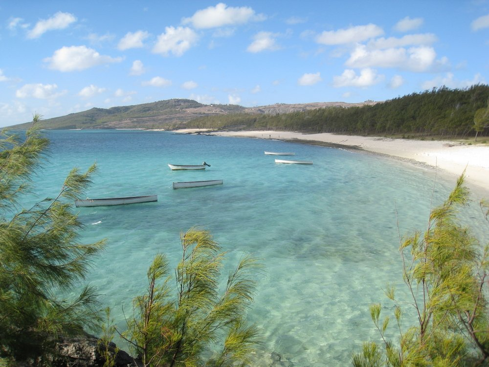 viaggio di nozze mauritius vinyl backdrops a rodrigues island