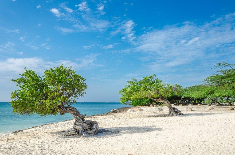 Viaggio di nozze Aruba, spiaggia
