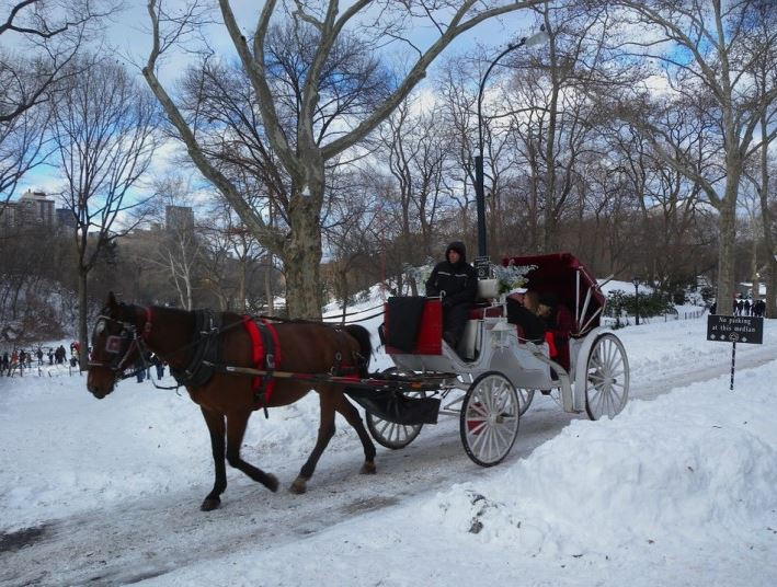 Sposi a New York nella neve a Central Park