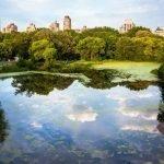 """Viaggio di nozze a New York, per vivere il romanticismo della """"Grande Mela"""""""