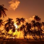 Trinidad e Tobago, viaggio di nozze ai Caraibi