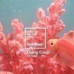 Pantone 2019 ecco il nuovo colore Living Coral